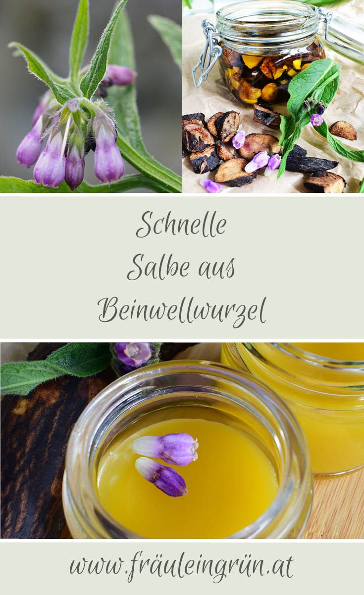 "Photo of Beinwell Salbe – ""Knochenheiler"" hausgemacht –"